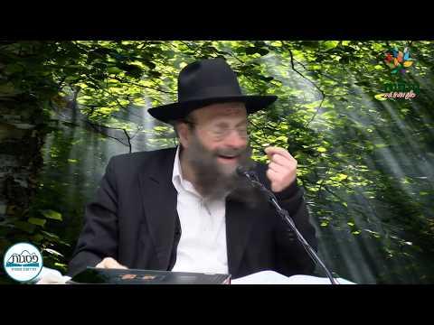 הרב גולדוסר - הארון קרוי עדות - שידור חי HD