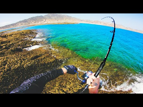 Fishing In Paradise!