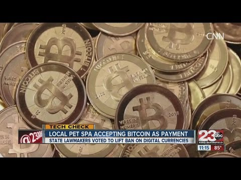 Bakersfield pet spa now accepting Bitcoin as payment