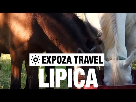 Lipica (Slovenia) Vacation Travel Video Guide