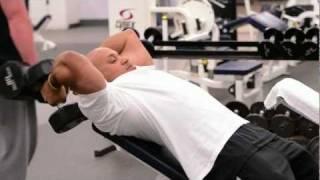 YMCA Membership   More Than A Gym