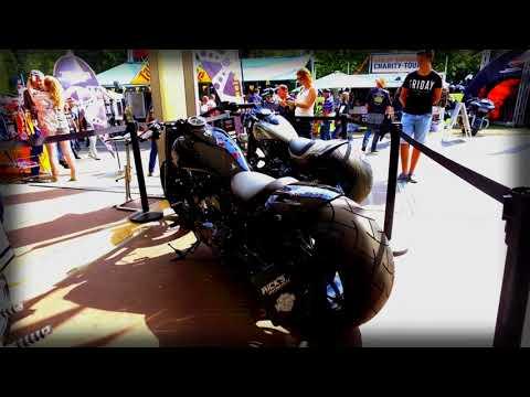 Rick's Motorcycles Harley-Davidson Softail Slim 360 Custom