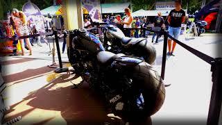 Rick`s Motorcycles Harley-Davidson Softail Slim 360 Custom