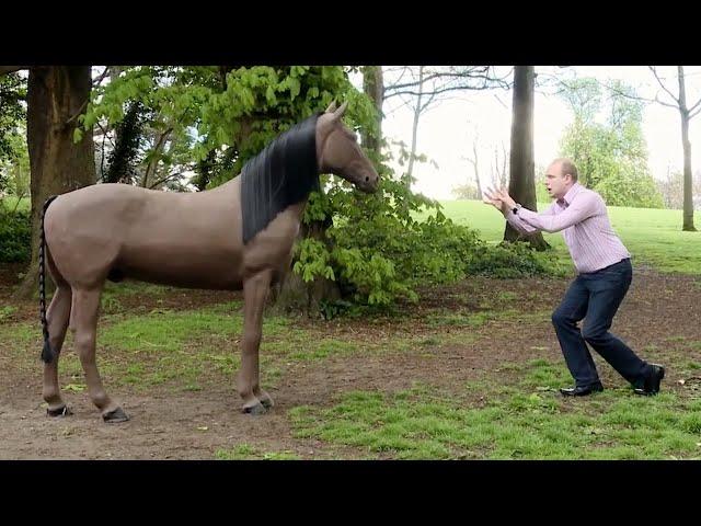 TV TV Episode 31 of 54 'HORSE SHOUTERER'