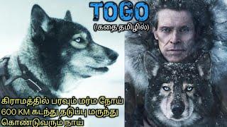 கொடூர புயலில் பயணம் ஒரு கிராமத்தை காப்பாற்றும் நாய் Tamil voice over|Story & Review in Tamil|online|