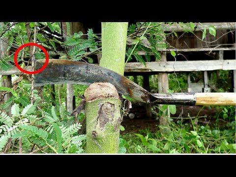 Making Cambodian Farmers' Most Popular Knife(Part II)(Different Handle) របៀបធ្វើកាំបិតកកុកខ្មែរ