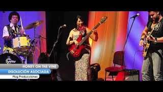 La Disolución Asociada - Honey On The Vine (Plug Producciones 2014) Plug Live Music