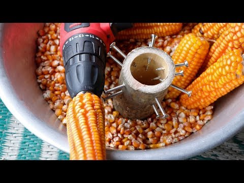 How To Make A Simple Corn Sheller At Home  DIY
