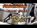 Pancingan Kacer Siang Malam Gacor Di Jamin Joss Konslet Kacer Anda  Mp3 - Mp4 Download