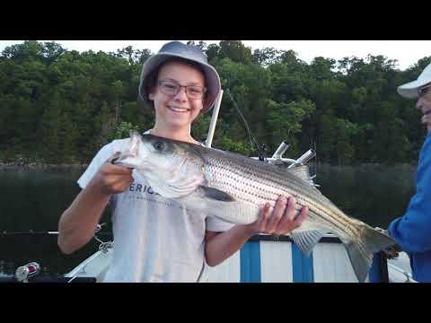 Norfork Lake Striper Fishing Trip