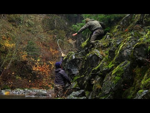 FALL RUN by Todd Moen - Steelhead Fly Fishing