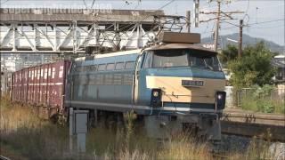 Video JR貨物 EF66 54号機(試験塗装機)+EF67 102号機 貨物列車2072レ 向洋駅 2011.11 download MP3, 3GP, MP4, WEBM, AVI, FLV Desember 2017
