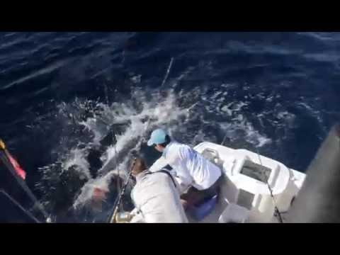 Blue Sky Cabo Fishing Video