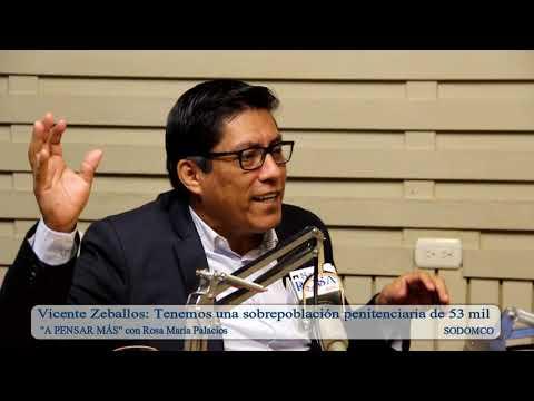 Vicente Zeballos: Tenemos una sobrepoblación penitenciaria de 53 mil