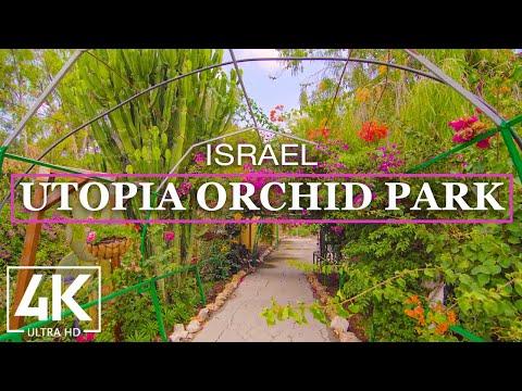 4K Virtual Walking Tour through Utopia Orchid Park, Bahan - Visiting Israel - Travel Journal