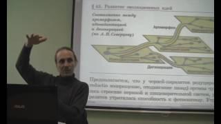Биология, эволюция или сотворение, лекция 19 С.Ю.Вертьянова Клетка Эволюция и сотворение