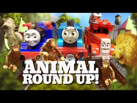 Thomas & Friends: Belle and Flynn's Amazing Animal Roundup! | TCC | Thomas & Friends
