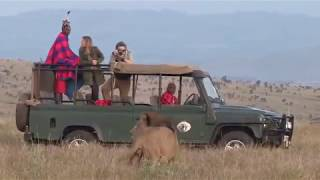 Game Viewing at Sirikoi Lodge