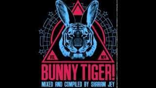 Sharam Jey & Vanilla Ace - Flash Rider (Original Mix) - BTLP004