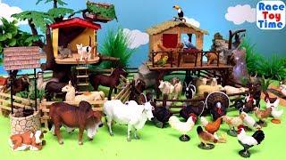 Fun Farm Animal Toys Video