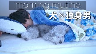 Grie the Toy Poodle - A Dog and His 27-Year-Old Dad's Morning Routine
