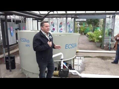 East Chicago Kicks off Organic Garden