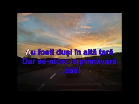Adda - Canta cucu - Karaoke