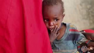 Malbouffe, famine et gaspillage : Un bilan alimentaire mondial