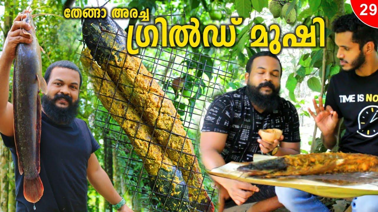 മുഷി ഗ്രിൽ ചെയ്താലോ?  Fish Gril Kerala Style | Camp Setters