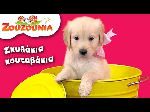 Ζουζούνια - Σκυλάκια Κουταβάκια   Nέο Παιδικό Τραγούδι