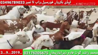 Gujranwala Mundra Chatra number 1 Sialkot daska Gujarat