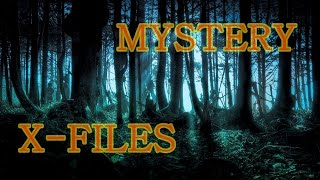5 Unsolved Mysteries of the World (Pyramids, Nazca, Costa Rica, Tree of Life)