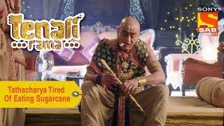 Your Favorite Character | Tathacharya Is Tired Of Eating Sugarcanes | Tenali Rama