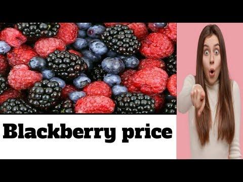 BlackBerry Fruit  Price In India  Hindi ! Blackberry Fruits Rate | Blackberries On Sale
