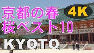 ★4K【KYOTO JAPAN】Top 10 in spring KYOYO 2017☆京都桜ベスト10