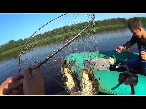 ловля щуки на летние кружки видео