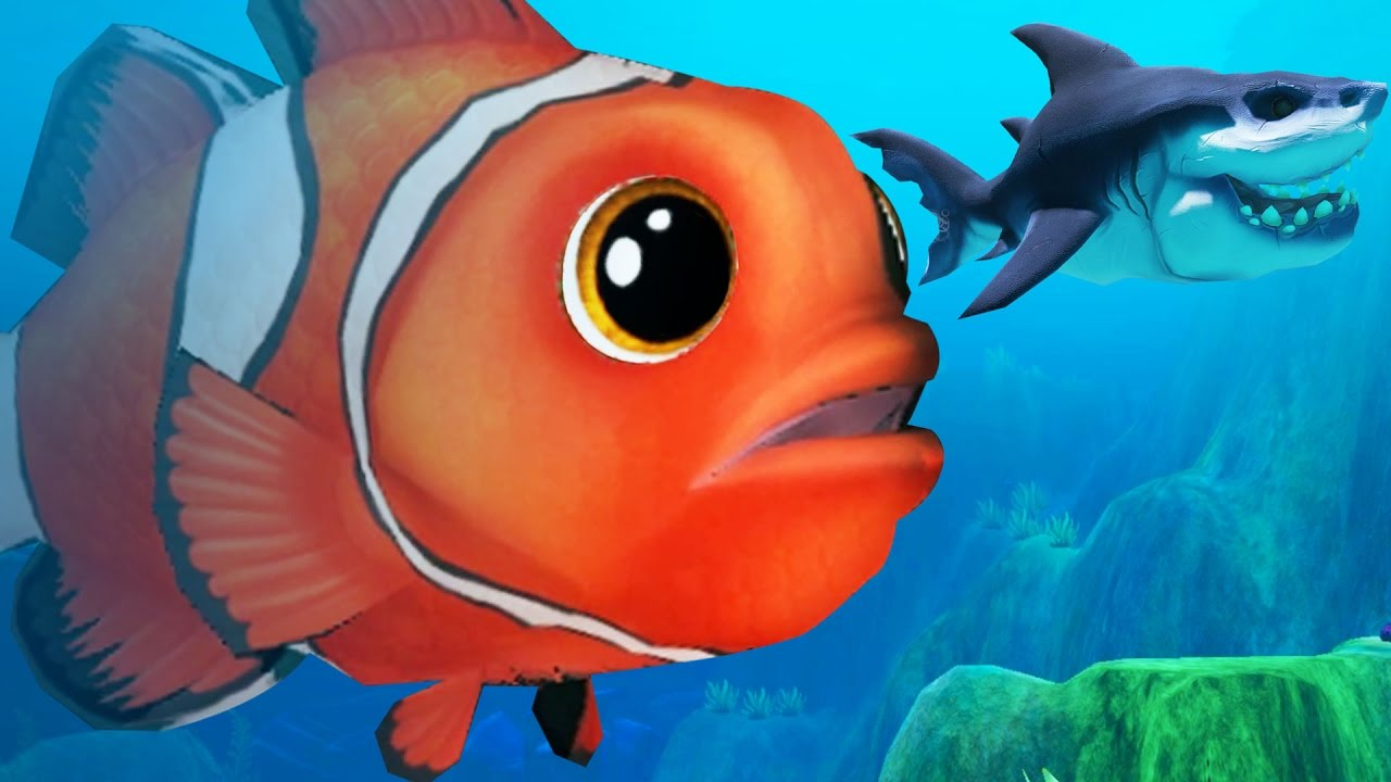 Giant clown fish vs great white shark feed and grow fish for Feed and grow fish online