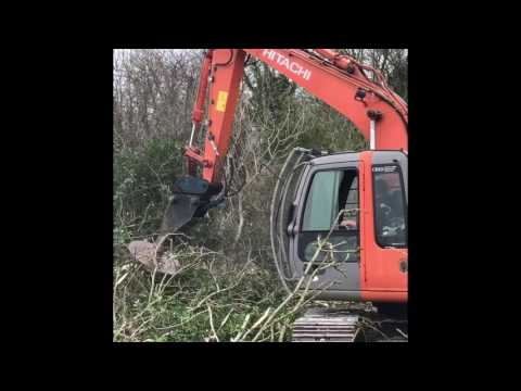 Andrew Kennedy Hedge Cutting 2017