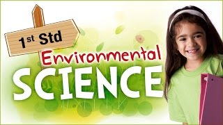 EVS For Class 1 | Learn Science For Kids | Environmental Science | Science For Class 1