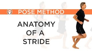Improve your Running Form - Anatomy of a Stride