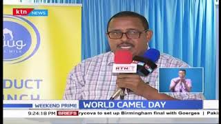 World Camel Day: Awareness about role of Camel
