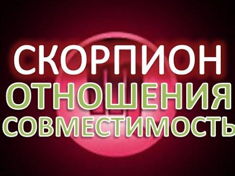 Скорпион гороскоп совместимости, гороскоп на совместимость