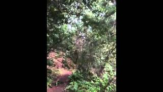 Open Space Preserve part 2