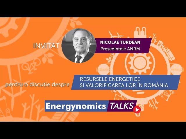 Nicolae Turdean, președintele Agenției Naționale pentru Resurse Minerale - ANRM