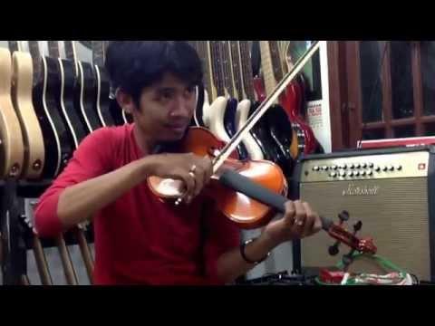 my heart will go on(cover) instrumen biola