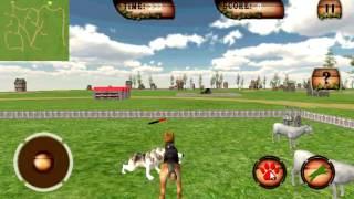 Farm Dog Chase Simulator 3D