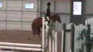MOST CRAZIEST HORSE BUCK!! must see!!! at Thunderbird show Park Rodeo