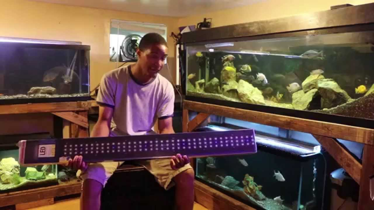 Marineland led light strip upgrade youtube mozeypictures Image collections