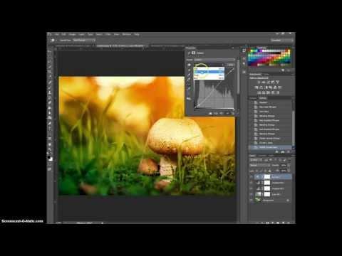Якрое солнечное фото в Photoshop (sunkissed effect)