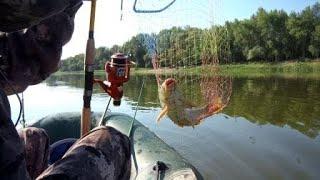Отличная рыбалка 10 июля Река Дон И небольшой отчет 1 часть
